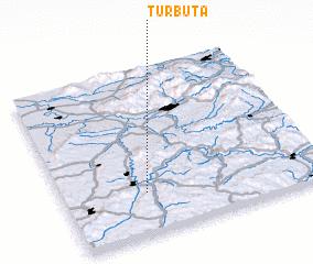 3d view of Turbuţa