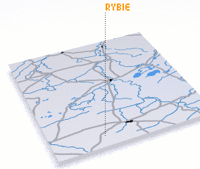 3d view of Rybie