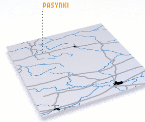3d view of Pasynki
