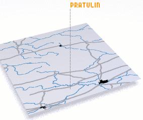 3d view of Pratulin
