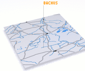 3d view of Bachus