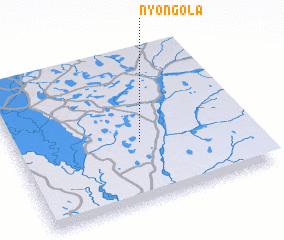 3d view of Nyongola