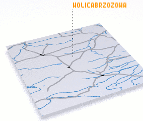 3d view of Wolica Brzozowa
