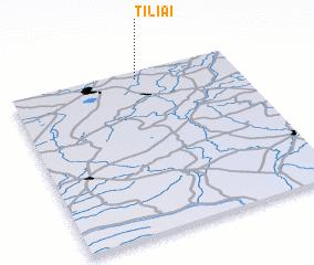 3d view of Tiliai