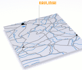 3d view of Kauliniai