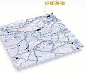 3d view of Cărbunari