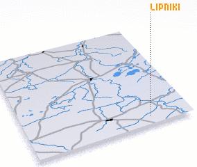 3d view of Lipniki