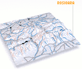 3d view of Roşioara