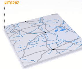 3d view of Witoroż