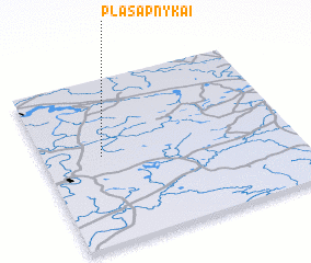 3d view of Plasapnykai