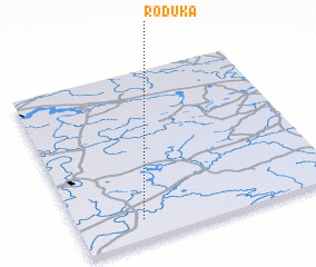 3d view of Roduka