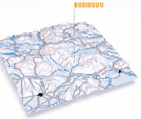 3d view of Borikovo