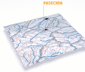 3d view of Pasechna
