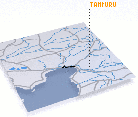 3d view of Tammuru