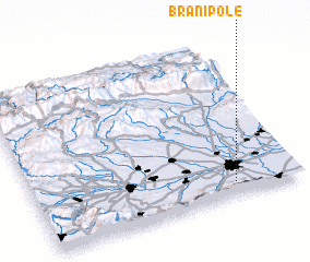 3d view of Branipole