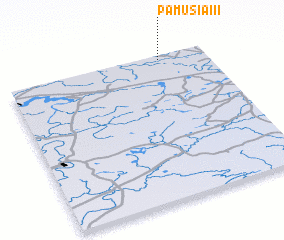 3d view of Pamusiai II