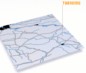 3d view of Tabokinė