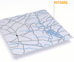 3d view of Pitsong