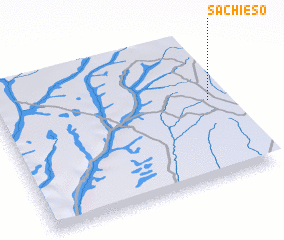 3d view of Sachieso