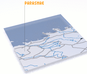 3d view of Parasmäe