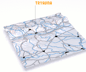 3d view of Tryavna