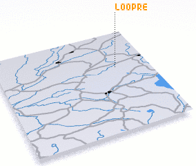3d view of Loopre