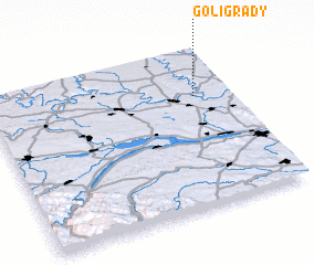 3d view of Goligrady