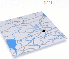 3d view of Ninasi