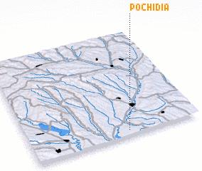 3d view of Pochidia