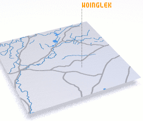 3d view of Woinglek