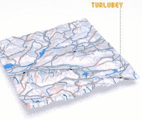 3d view of Türlübey