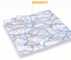 3d view of Hamamköy