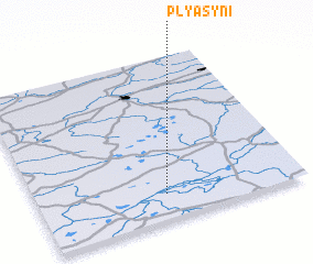 3d view of Plyasyni