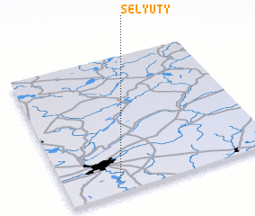 3d view of Selyuty
