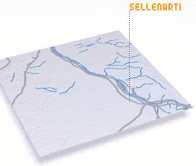 3d view of Sellenarti