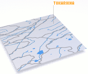 3d view of Tokarikha