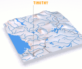 3d view of Timothy