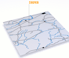 3d view of Savka