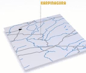 3d view of Karpina Gora