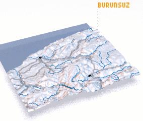 3d view of Burunsuz