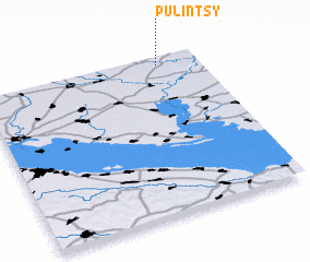 3d view of Pulintsy