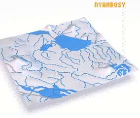 3d view of Nyambosy