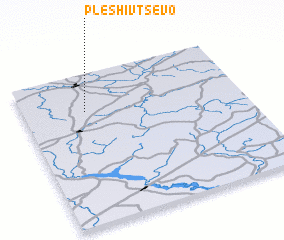 3d view of Pleshivtsevo