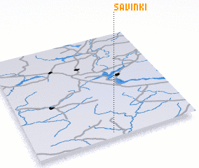 3d view of Savinki