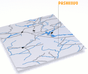 3d view of Pashkovo