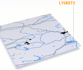 3d view of Lyubets