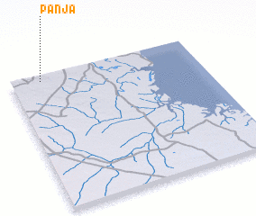 3d view of Panja
