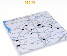 3d view of Negino