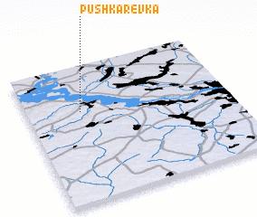 3d view of Pushkarëvka
