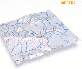 3d view of Kobocha